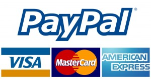 high risk alternatives to paypal